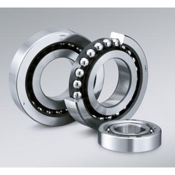 Chnese Factory Supply Cylindrical Roller Bearing for Equipments (NU319EM)